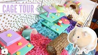 Rainbow Themed Hamster Cage! 🌈🐹