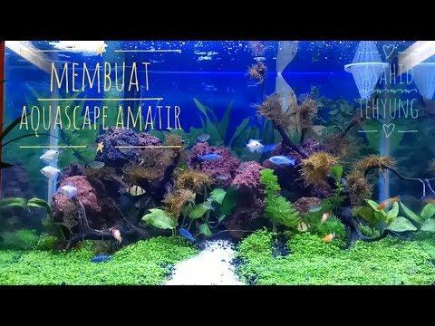 Cara Membuat Aquascape untuk Pemula (Amatir)