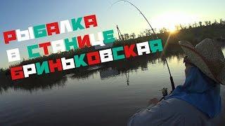 Рыбалка в краснодарском крае бриньковская