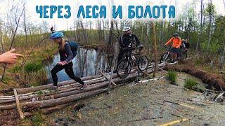 Лесные мтб приключения На велосипедах по болотам /10.05.2019/