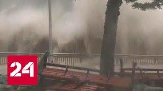 Летающие грузовики и вырванные деревья: