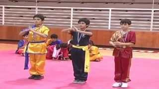 Segundo Campeonato Nacional de Wushu Junior 2014