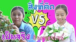 สิ่งที่คิด VS ความเป็นจริง ละครสั้น วันวาเลนไทน์ น้องวีว่า พี่วาวาว | Wow Sister Toy