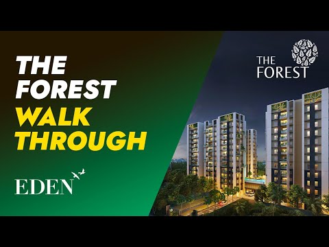 3D Tour of The Forest