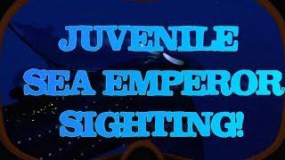 subnautica soundtrack sea emperor - मुफ्त ऑनलाइन