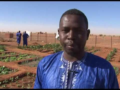 AMCC Mauritanie PNUD Union Européenne