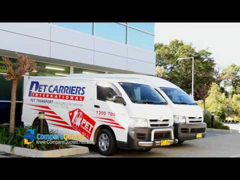 , title : 'Pet Carriers International | Pet Transport | Moving Pets | Moving Animals | Animal Transport