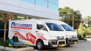 Pet Carriers International | Pet Transport | Moving Pets | Moving Animals | Animal Transport