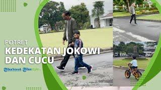 Potret Kedekatan Presiden Jokowi dan Jan Ethes: Rasanya Baru Kemarin Saya Timang-timang