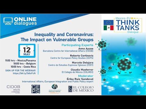 Webinar: Inequality and Coronavirus: The impact on vulnerable groups