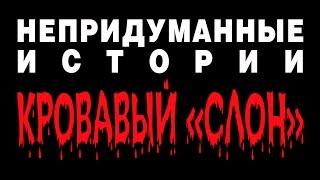 """НЕПРИДУМАННЫЕ ИСТОРИИ (ч. 8) Кровавый """"СЛОН"""""""
