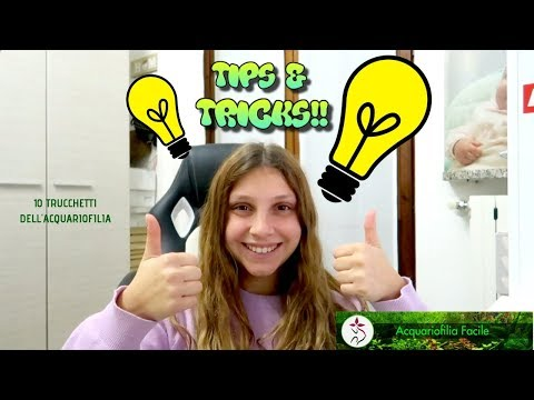 TIPS & TRICKS DELL'ACQUARIOFILIA!