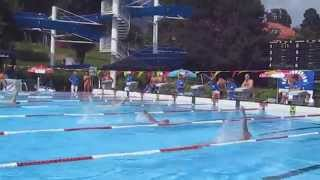 preview picture of video 'Men's 200m Individual Medley - IMM 2014 Hall in Tirol'