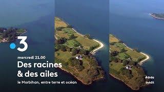 Morbihan, entre terre et océan - Bande-annonce | Kholo.pk