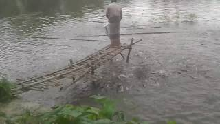 preview picture of video 'Fish farm in bangladesh'