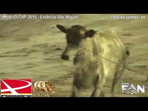 Final CLCNP 2019 - Estância São Miguel