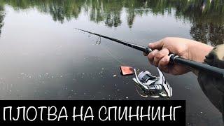 Рыбалка плотвы на неве