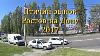 Где в Ростове птичий рынок