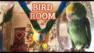 EPIC BIRD ROOM TOUR! *angel sleeps in a box*