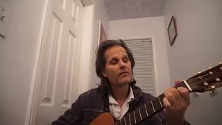 BRANDI CARLILE THE JOKE EASY GUITAR LESSON
