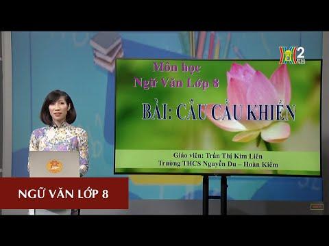 MÔN NGỮ VĂN - LỚP 8 | CÂU CẦU KHIẾN | 10H00 NGÀY 28.03.2020 | HANOITV