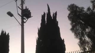 preview picture of video 'Objetos voladores (OVNI, UFO) desde Texcoco  estado México caso 1  (HD)'