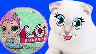Котенок Феликс играет с шариком ЛОЛ #L O L  смешное видео приколы с котами