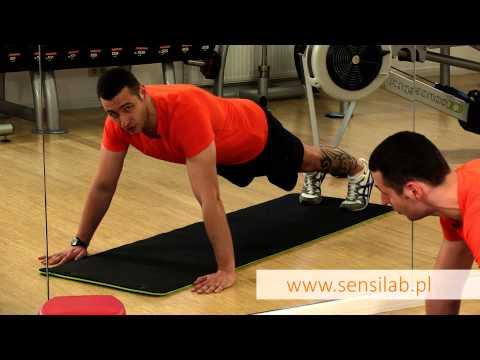 Struktura mięśni, a jego praca