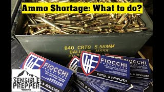 Ammo Shortage : What to do?