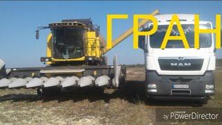 Уборка кукурузы 2018 (ГРАН)