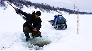 Ловля налима зимой на озёрах