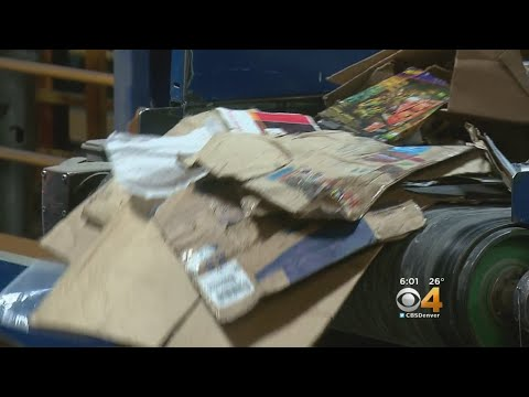 , title : ''You Can't Overwhelm Us With Cardboard' Says Colorado Recycling Company