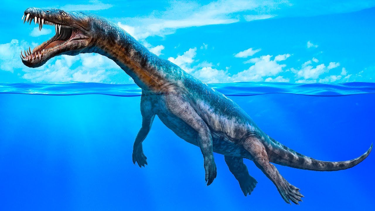 海に生きた最大級の恐竜たち - ...