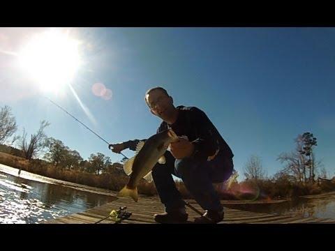 Farm Pond Bass Fishing Thomson, Georgia
