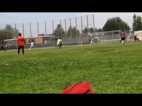 Goalkeeper save during game