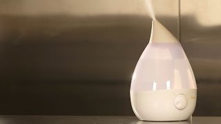Humidifier Buying Guide (Interactive Video) | Consumer Reports