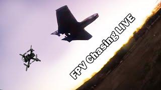 FPV Chasing LIVE - Quads vs. Wings