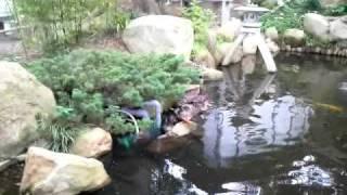 茨城県桜川市雨引観音