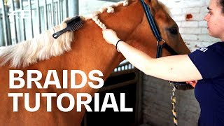 How to braid your horse's mane? Tutorial with Olivia Towers | Guest Vlog