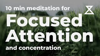 10 Minute Guided Meditation for Focused Attention and Concentration (No Music, Voice Only)
