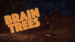 A Field of Brain Trees