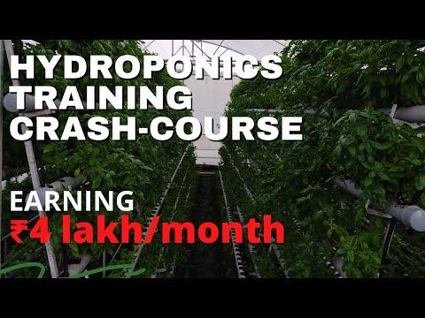 Learn Hydroponics India. | Hydroponics Training 2021 - YouTube