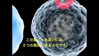 カンナビノイド抗癌作用の説明
