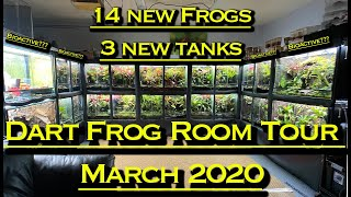 Poison Dart Frog Room Tour March 2020 14 New Frogs! 3 New Vivs!!
