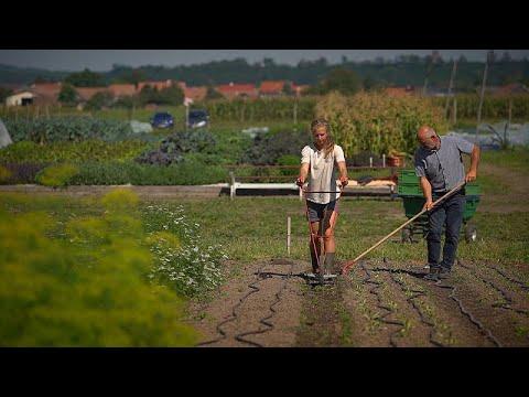 Αποστολή της Ε.Ε.: Η υγεία του εδάφους και η προστασία από την αποσάθρωση…