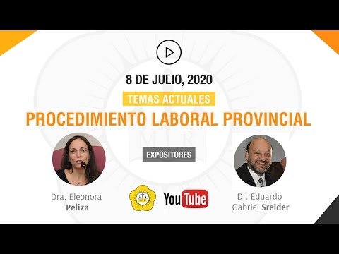TEMAS ACTUALES DE PROCEDIMIENTO LABORAL PROVINCIAL