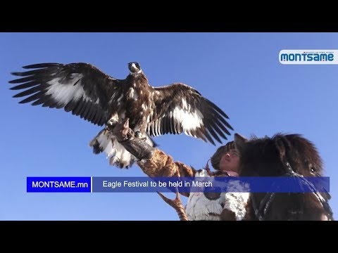 Eagle Festival to be held in March
