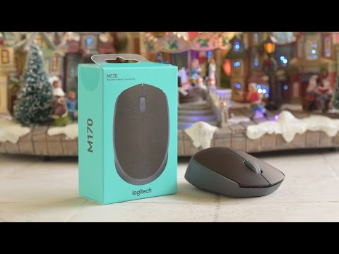 $10 Logitech M170 Wireless Mouse Review!