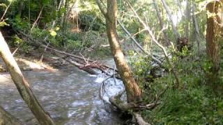preview picture of video 'Río Guatizalema - Fuente  de la catalana - Fañanás 2010'