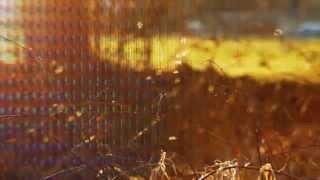 Essáy ft Rhian Sheehan - Morning Mountain (Official)